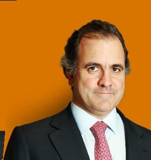 António Pires de Lima<br>Presidente da Direção da EPIS (2010 a 24 Julho de 2013)